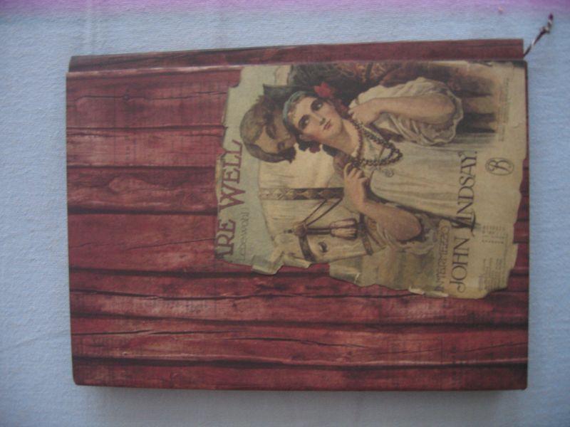 Buch Vivian u. Meine Arbeiten 010